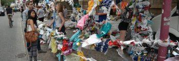 8.000 Plastiktüten gesammelt